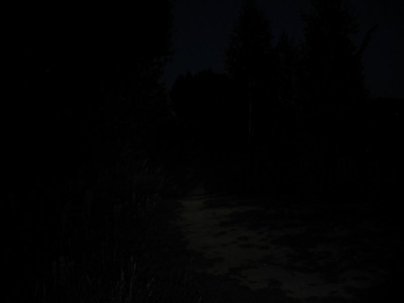 GearBest: Xtar H3W Warboy – Теплое обновление хорошего налобника