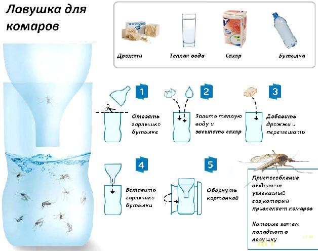 Ловушка для комаров своими руками дрожжи