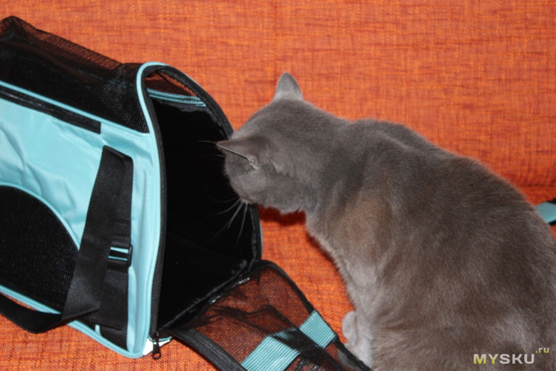 Как сделать свою переноску для котов 125