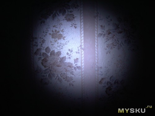 Фото в темноте, фонарь светит на стену с расстояния 40 см.