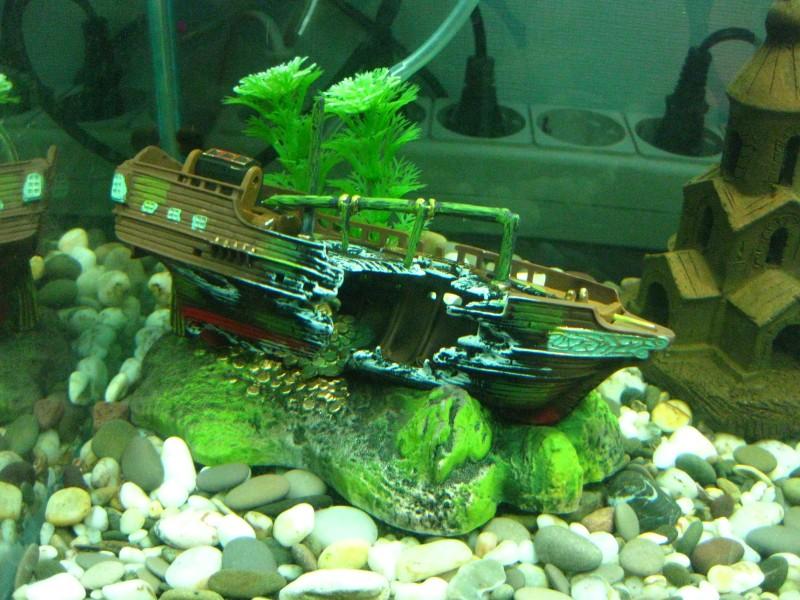 картинки затонувших кораблей для аквариума снимали, просто просили